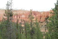 BryceCanyonNP_20100818_0102.JPG Photo