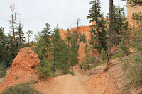 BryceCanyonNP_20100818_0176.JPG Photo