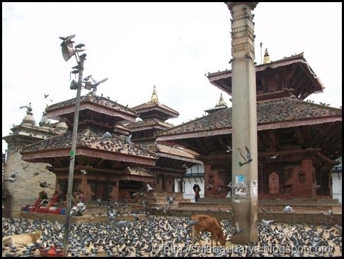 Kathmandu Durbar Square (5)