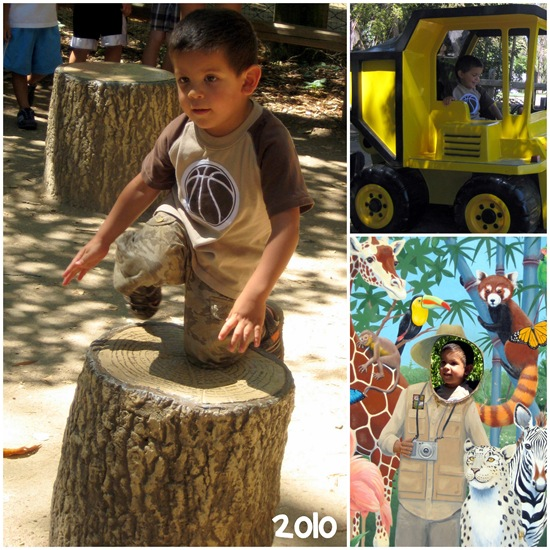 papi 2010 collage