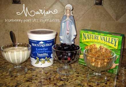 Marian blueberry parFIAT ingredients
