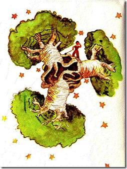 baoba-pequeno-principe1