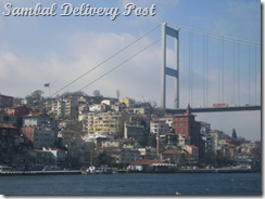 Old Bosphorus and the city