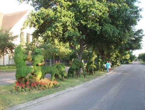 Topiary Garden Lining The Street On Buffalo Speedway, North Of Highway 59 South In Houston, Texas. A Great Free Attraction!