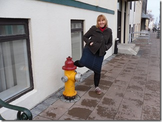 Iceland Fire Hydrant