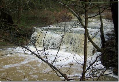 creek6