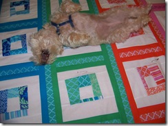 maggie on quilt 2