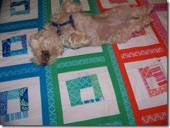 maggie on quilt 2