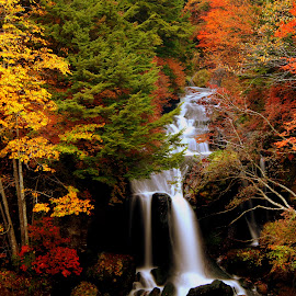 Autumn In My Heart in Nikko, Japan by Cristiano Michael - Landscapes Mountains & Hills