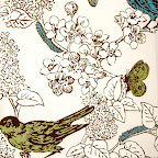Thomas Paul New Bird Fabric.jpg