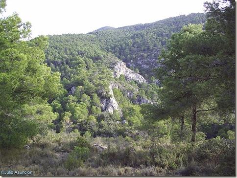 Entorno de la Cueva dle Lagrimal - Villena
