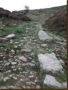 Calzada  romana - Puerto de Belate