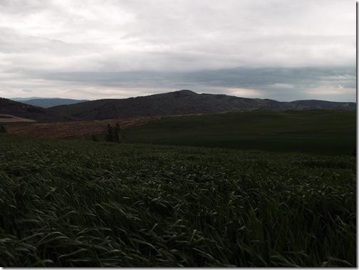 Sierra de Gongolatz - Iriso - Izagaondoa