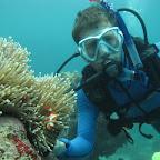 David mit Nemo