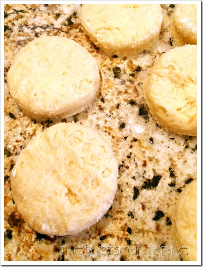 Cream Butter Scones 005a