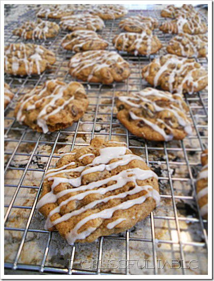 Hermit Cookies 029a