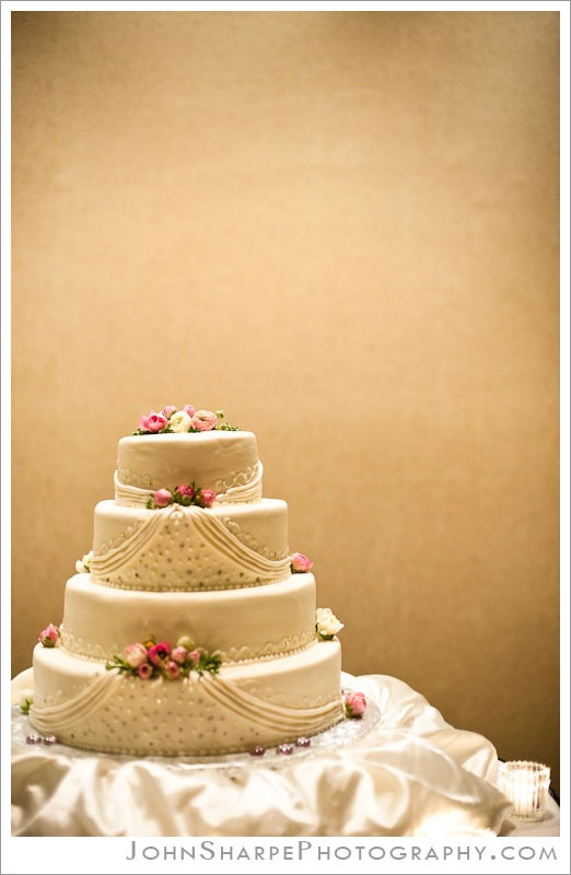 Minneapolis  Wedding Photographer at Holiday Inn Metrodome Cake