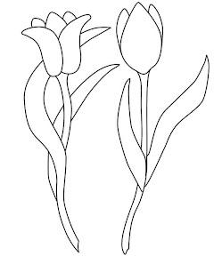TULIPANES (8).jpg