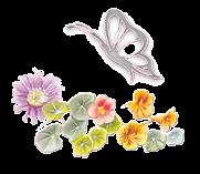 gif,flor,borboleta