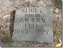 Alice Fell