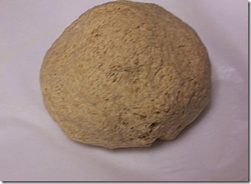 whole-wheat-olive-oil-bread 037