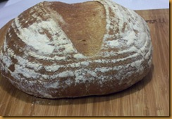 basic-savory-bread-dough 057