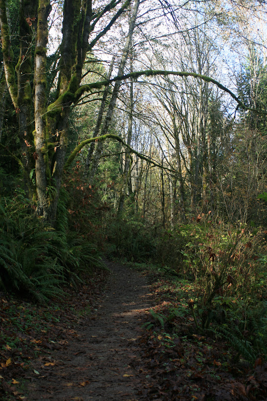 Wildside Trail