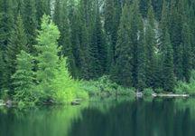 göl manzarası resmi
