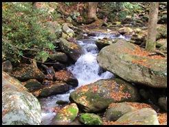 Roaring Fork stream 3