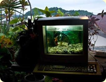 AquaComputer_sml1