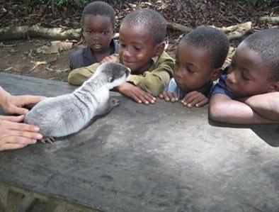 Mazu and the children small