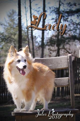 0441--Lady-Web2