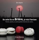 de_cette_ile_en_briere_je_vois_lhorizon_par_eric_guerin