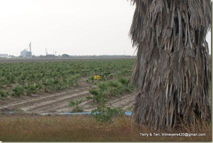 Santa Ana W R 2-15-2009 2-53-42 PM 3264x2448