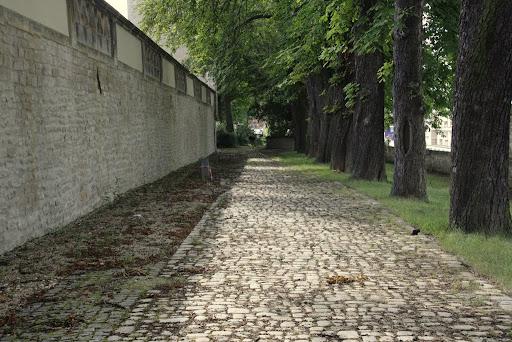 http://lh5.ggpht.com/_uzLsIJX7LLU/TSCa0hXCEQI/AAAAAAAACiQ/nWcw4rLX6cI/s512/Eichkaetzchen-Villapark-25072010-IMG_5328.JPG