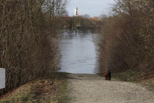 http://lh5.ggpht.com/_uzLsIJX7LLU/TTH6VGZbBCI/AAAAAAAACoI/cpfXF_duo1Q/regensburg-hochwasser-15012011IMG_1392.JPG