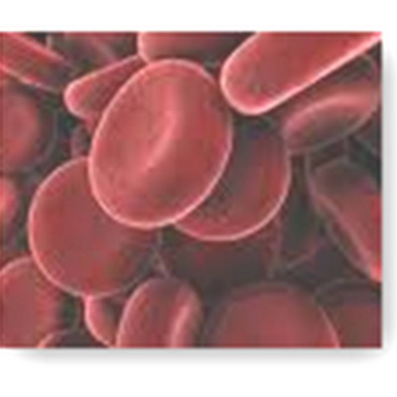 FDA Reviewing First Shipment of Synthetic Blood From Arteriocyte – Umbilical Cord Yields 20 Units of Blood