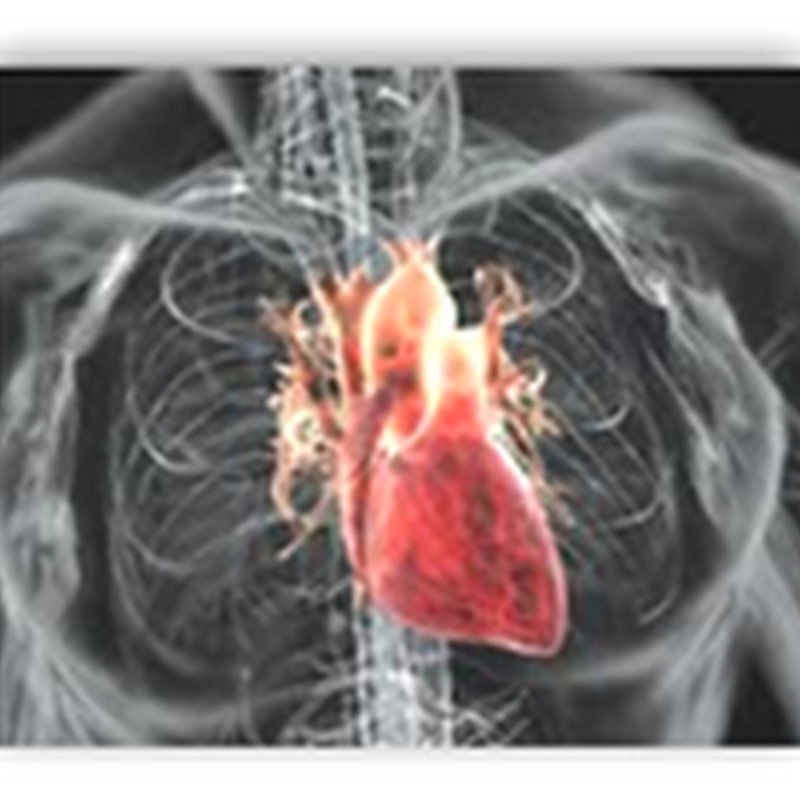 Stem Cell Trial Reports Success With Cardiovascular Repair With Reducing Size of Enlarged Heart and Increased Ability to Pump Blood