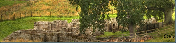 chesters fort pan_edited-1