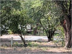 Estero Llano Grande Sp26