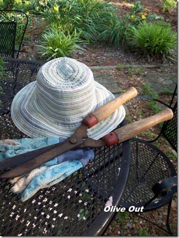 gardening june2010 006
