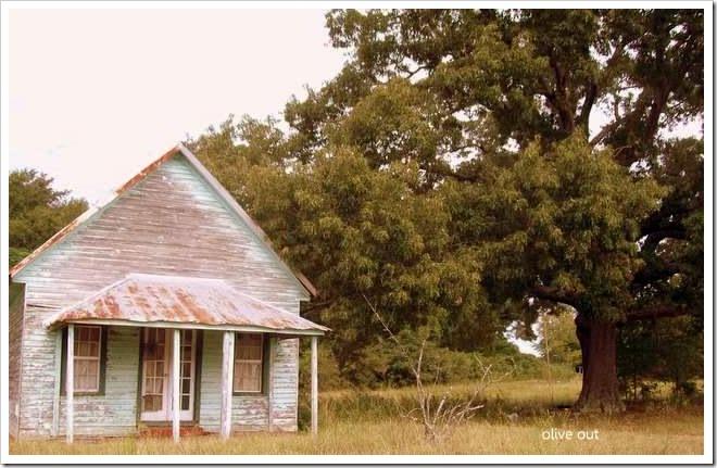 green house 012-1