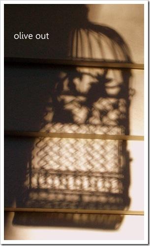 shadows 038