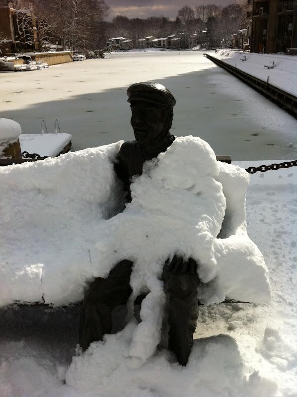snowy bob.JPG