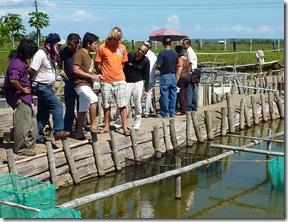 Trainees of the international marine fish hatchery training