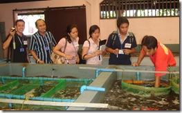 The trainees take notes on the hatchery production of abalone