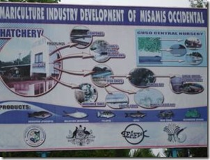 Mariculture Industry Development Plan of Misamis Occidental