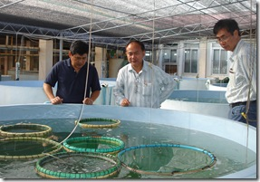 From left: AQD Chief Dr. Joebert Toledo gives a tour of AQD facilities to SEAFDEC Secretary-General Dr. Chumnarn Pongsri and Mr. Somnuk Pornpatimakorn
