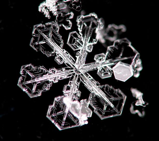 снежинки фотографии