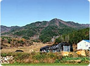Chilgok Mt. Yuhak Area
